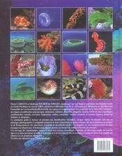 Lagons et récifs de Nouvelle-Calédonie - 4ème de couverture - Format classique