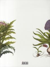 L'herbier de Basilius Besler - 4ème de couverture - Format classique