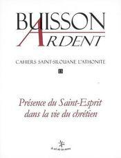 Présence du saint esprit dans la vie du chrétien - Intérieur - Format classique