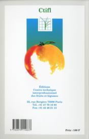 L'amandier - 4ème de couverture - Format classique