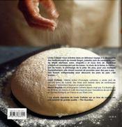 Pains - 4ème de couverture - Format classique