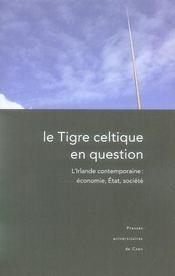 Le tigre celtique en question ; l'irlande contemporaine : économie, état, société - Intérieur - Format classique