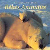 Le Monde Des Bebes Animaux - Intérieur - Format classique