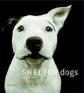 Vente livre :  Shelter Dogs  - Ouvrage Collectif