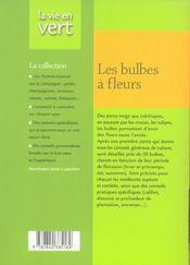 Bulbes A Fleurs - 4ème de couverture - Format classique