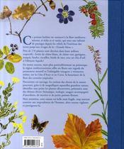 Herbier méditerranéen - 4ème de couverture - Format classique