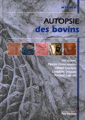 Autopsie des bovins - Intérieur - Format classique