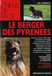 Le Berger Des Pyrenees - Intérieur - Format classique