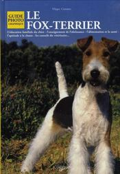 Fox Terrier - Intérieur - Format classique