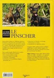Le pinscher - 4ème de couverture - Format classique