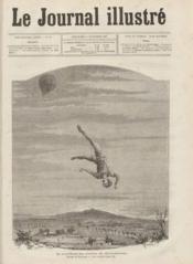 Journal Illustre (Le) N°46 du 14/11/1880 - Couverture - Format classique