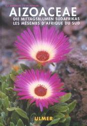 Aizoaceae - Intérieur - Format classique