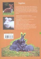 Les lapins - 4ème de couverture - Format classique