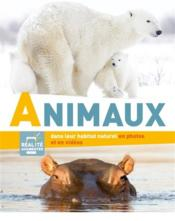 Vente  Animaux  - Collectif