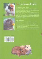 Les cochons d'inde - 4ème de couverture - Format classique