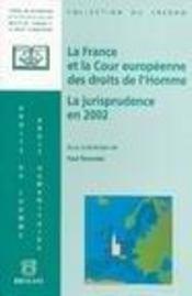 France Et La Cour Europeenne Des Droits De L'Homme. Jurisprudence En 2002 (La) - Intérieur - Format classique