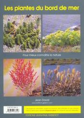 Les plantes du bord de mer - 4ème de couverture - Format classique