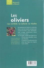 Les Oliviers - 4ème de couverture - Format classique