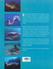 Nager avec les habitants des océans - 4ème de couverture - Format classique