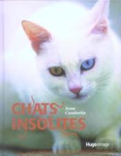 Chats insolites - Couverture - Format classique