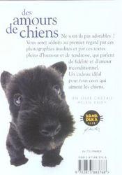 Amours De Chiens - 4ème de couverture - Format classique