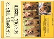Norwish Et Norfolk Terriers - Intérieur - Format classique