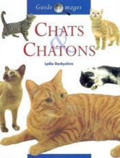 Chats Et Chatons - Couverture - Format classique