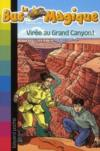 Viree Au Grand Canyon T20