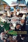 Les champignons insolites : comment recolter et cuisiner des champignons aux vertus medicinales