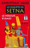 Les enquêtes de Setna ; le voleur d'âmes