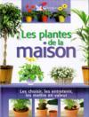 Plantes de la maison