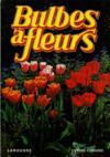 Bulbes A Fleurs