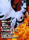 DVD & Blu-ray - Williams, Robbie - What We Did Last Summer - Live At Knebworth