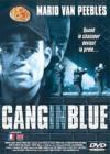 DVD & Blu-ray - Gang In Blue