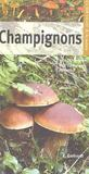 Champignons (2e édition)
