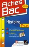 Livres - Histoire ; terminales L, ES