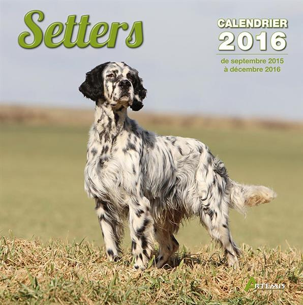 Setters (2016)  - Collectif