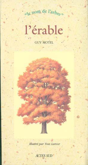 Vente Livre :                                    L'erable                                      - Guy Motel