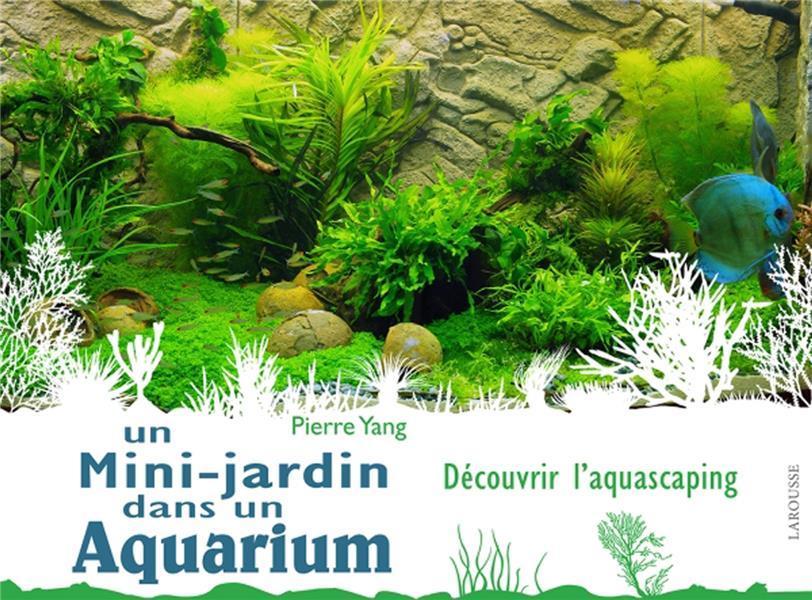 un mini jardin dans un aquarium pierre yang france loisirs suisse. Black Bedroom Furniture Sets. Home Design Ideas