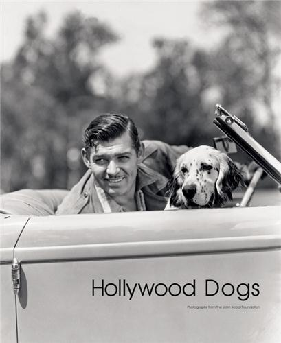 Hollywood dogs  - Abbott Gareth
