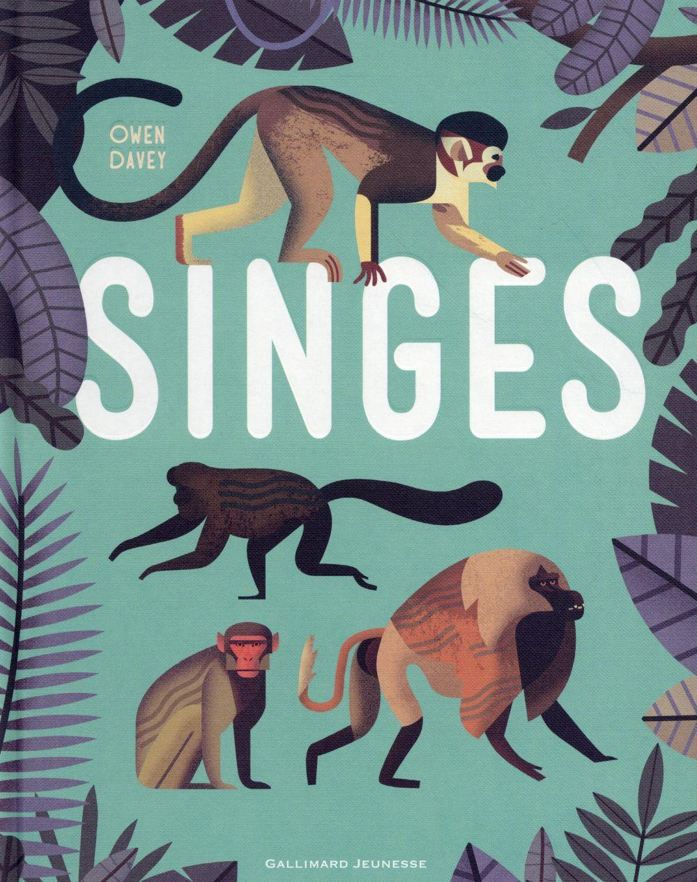 Singes  - Owen Davey