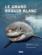Le grand requin blanc ; du mythe à la réalité