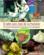 Jean de la Fontaine ; 55 recettes fabuleuses et morales de nos campagnes