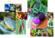 Fruits et légumes au tricot