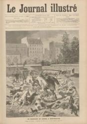 Journal Illustre (Le) N°22 du 02/06/1895 - Couverture - Format classique