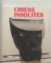Chiens insolites - Couverture - Format classique