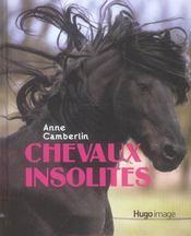 Chevaux insolites - Intérieur - Format classique