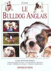 Bulldog Anglais Guide Photo - Intérieur - Format classique
