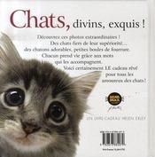 Chats divins, exquis ! - 4ème de couverture - Format classique