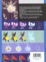 Peinture Sur Bois Fleurs De Montagne - 4ème de couverture - Format classique